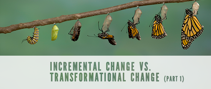 Incremental Change vs. Transformational Change.png